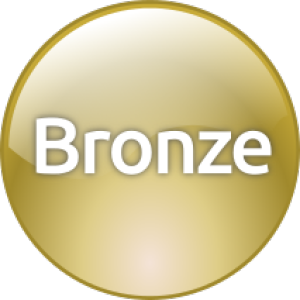 Entente de services complets Niveau Bronze (ESC/TSA) - Bronze Level Support